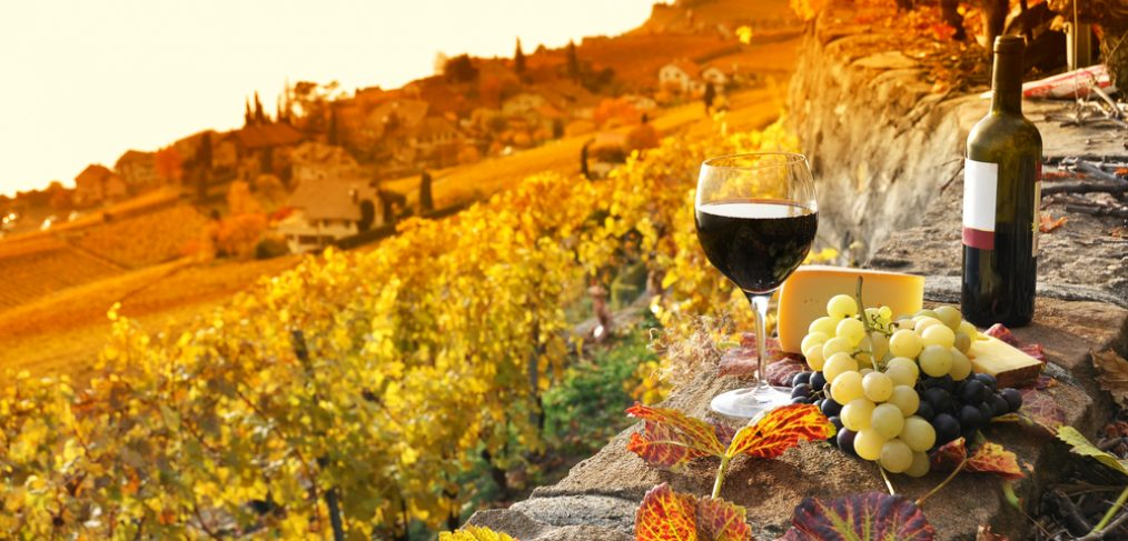 Wine Club: Fall Package